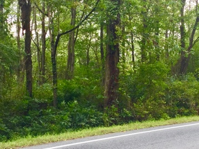 Residential Lots & Land For Sale: N. Quaker Hill Rd