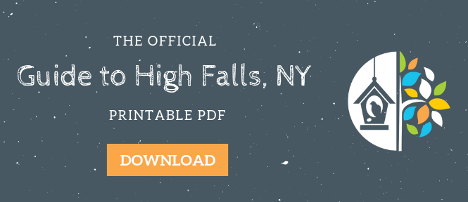Your Field Guide to High Falls, NY