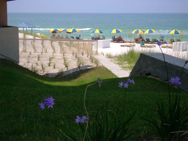 Gulf Front Condos & Ocean Views