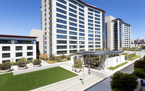 San Francisco CA Condo Leased: $3,775