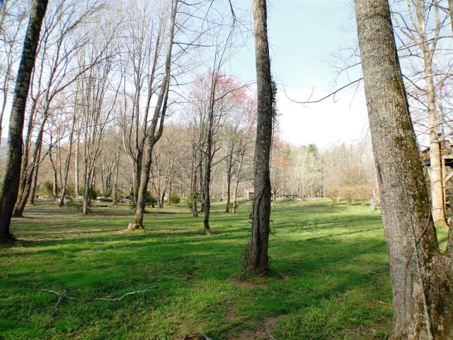 What beautiful flat grounds on this 5 acre property, John Becker, Keller Williams
