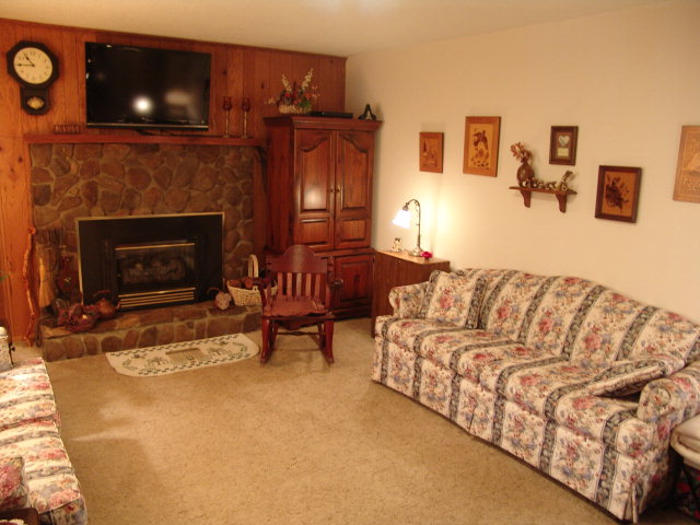 Enjoy the gas log fireplace in the living room, Franklin NC Homes for Sale, Franklin Properties, Smokey Mountain Real Estate