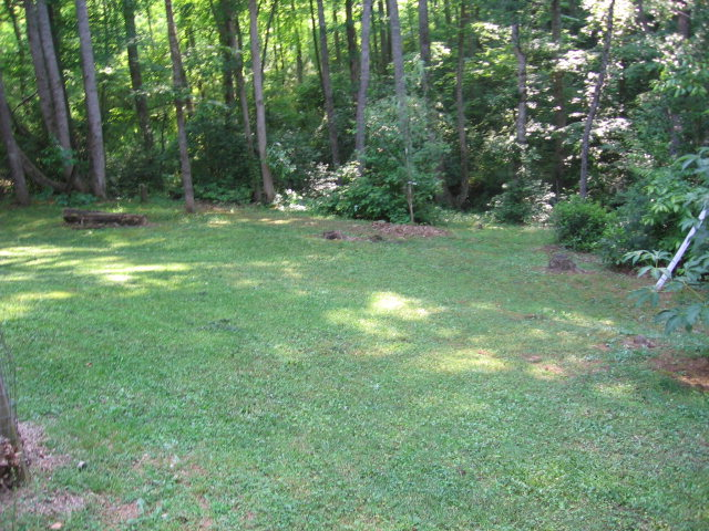 361 Country Bend Road Franklin NC 28734 Real Estate, Franklin NC Homes for Sale, Franklin NC Free MLS Search, Franklin NC Cabin for Sale, John Becker Baldhead