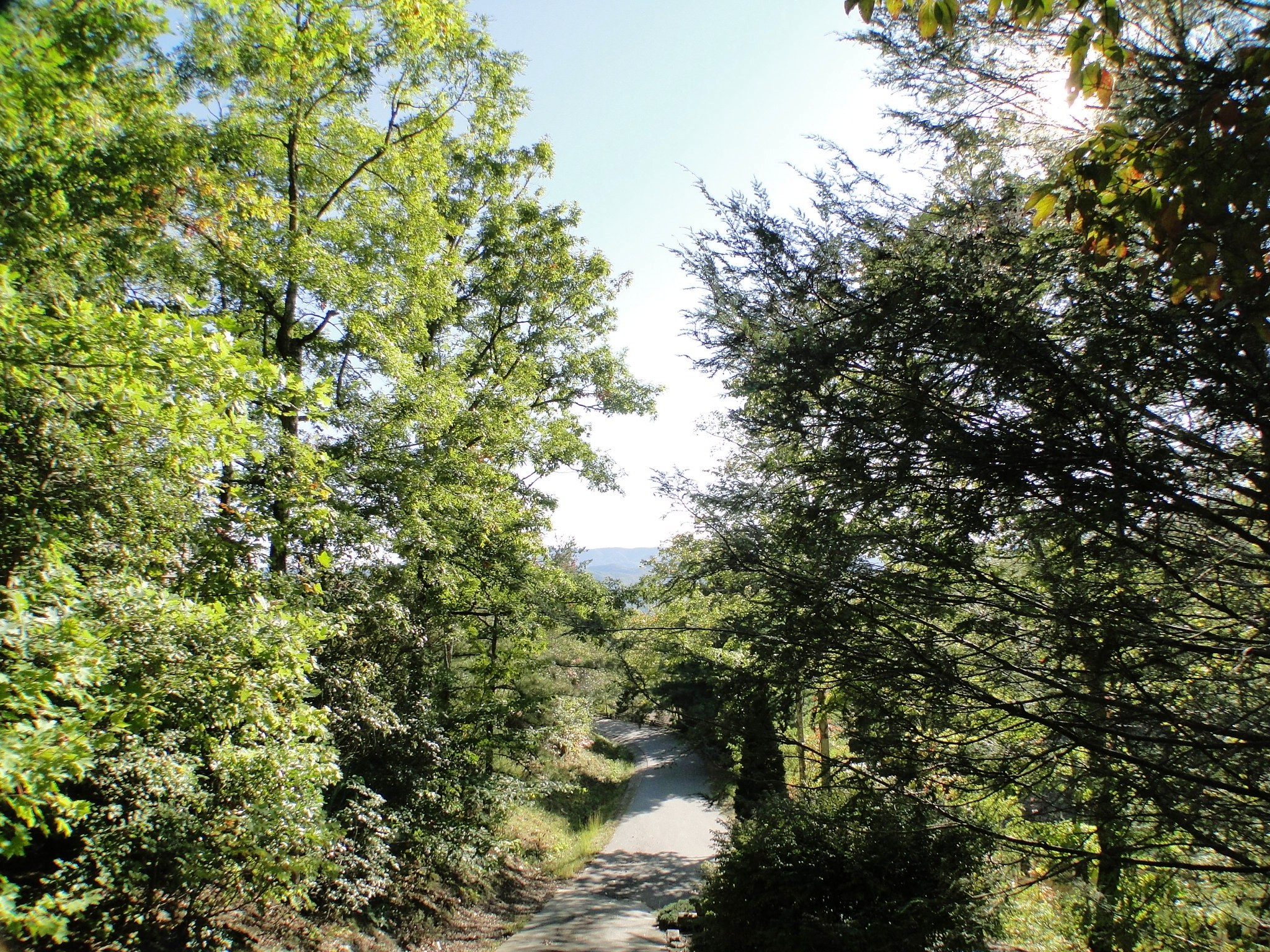real estate in franklin nc, bald head the realtor, franklin nc real estate for sale, homes for sale in the mountains of franklin nc, 625 woodland heights drive franklin nc