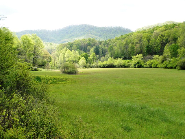 beautiful ready-to-build 12.55 acres for sale in Franklin NC, Franklin NC Land for Sale, Free MLS Search Franklin NC
