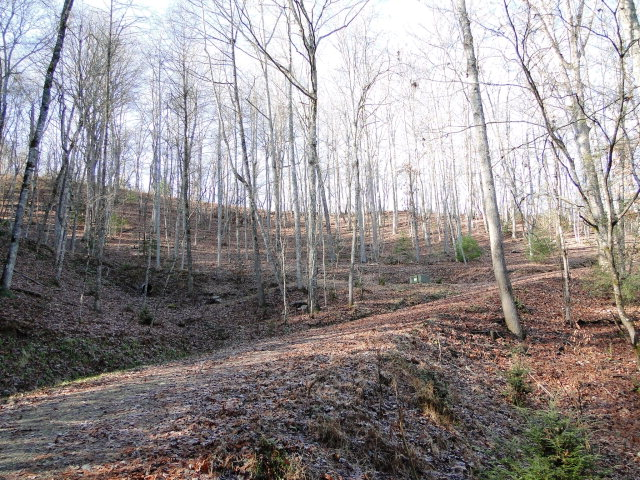 9 Homesites, 15 acres, Subdivided, Investment Property, Otto NC Land For Sale