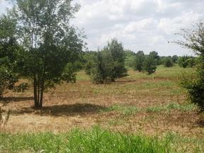 Farm & Ranch Sold: 1365 Fm & 512 Lcr