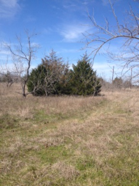 Residential Lots and Land Sold: 1000 LCR 462