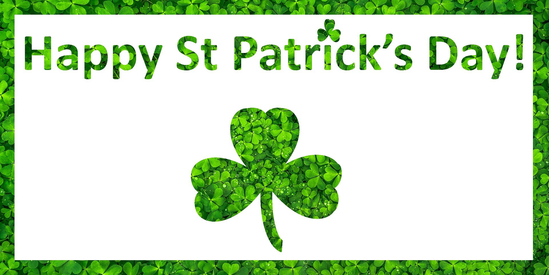 Happy St. Patrick's Day image with shamrocks