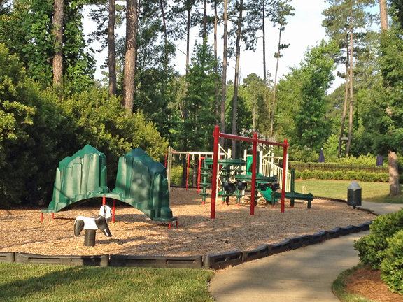 Playground in The Preserve at Jordan Lake