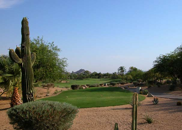 Listings of desert homes for sale in Chandler, Gilbert, Mesa, Sun Lakes and Queen Creek AZ 55 Retirement Communities. (photo)