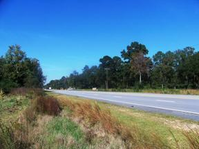 Commercial Listing For Sale: Lots 61-62 HWY 84