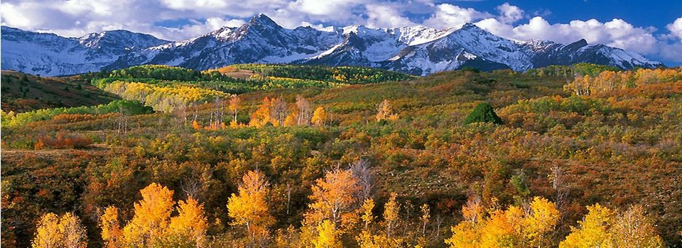 Colorado dream properties real estate and property for Colorado dream home