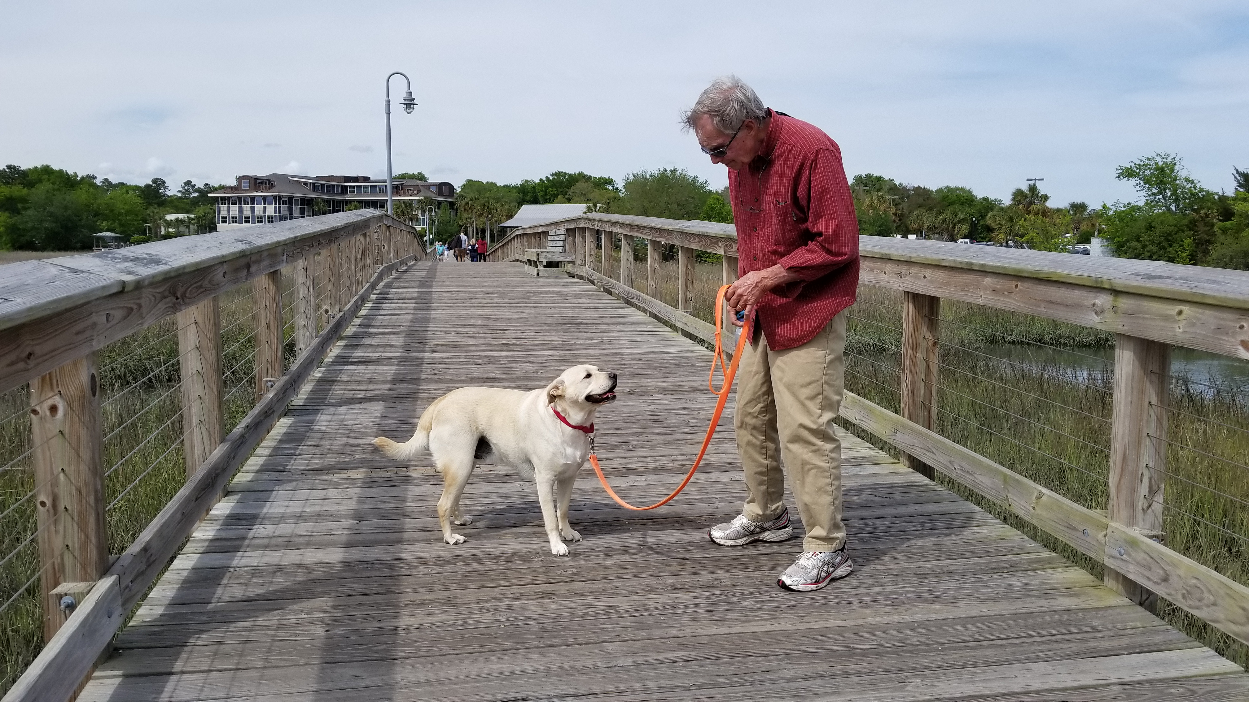 Cooper at Shem Creek Park boardwalk