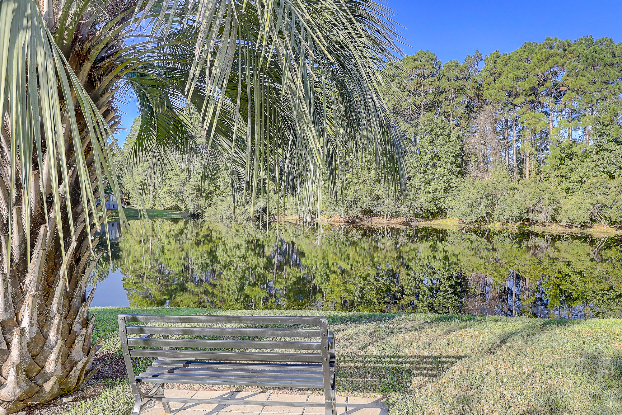Awesome Lagoon View Home For Sale in Sawmill Forest
