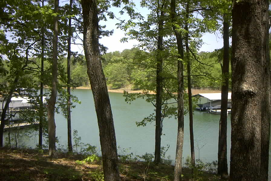 Hartwell Lakefront