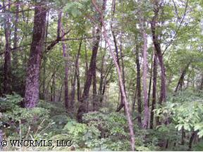 Residential Lots and Land Sold: L-4 LAUREL CREEK DR.