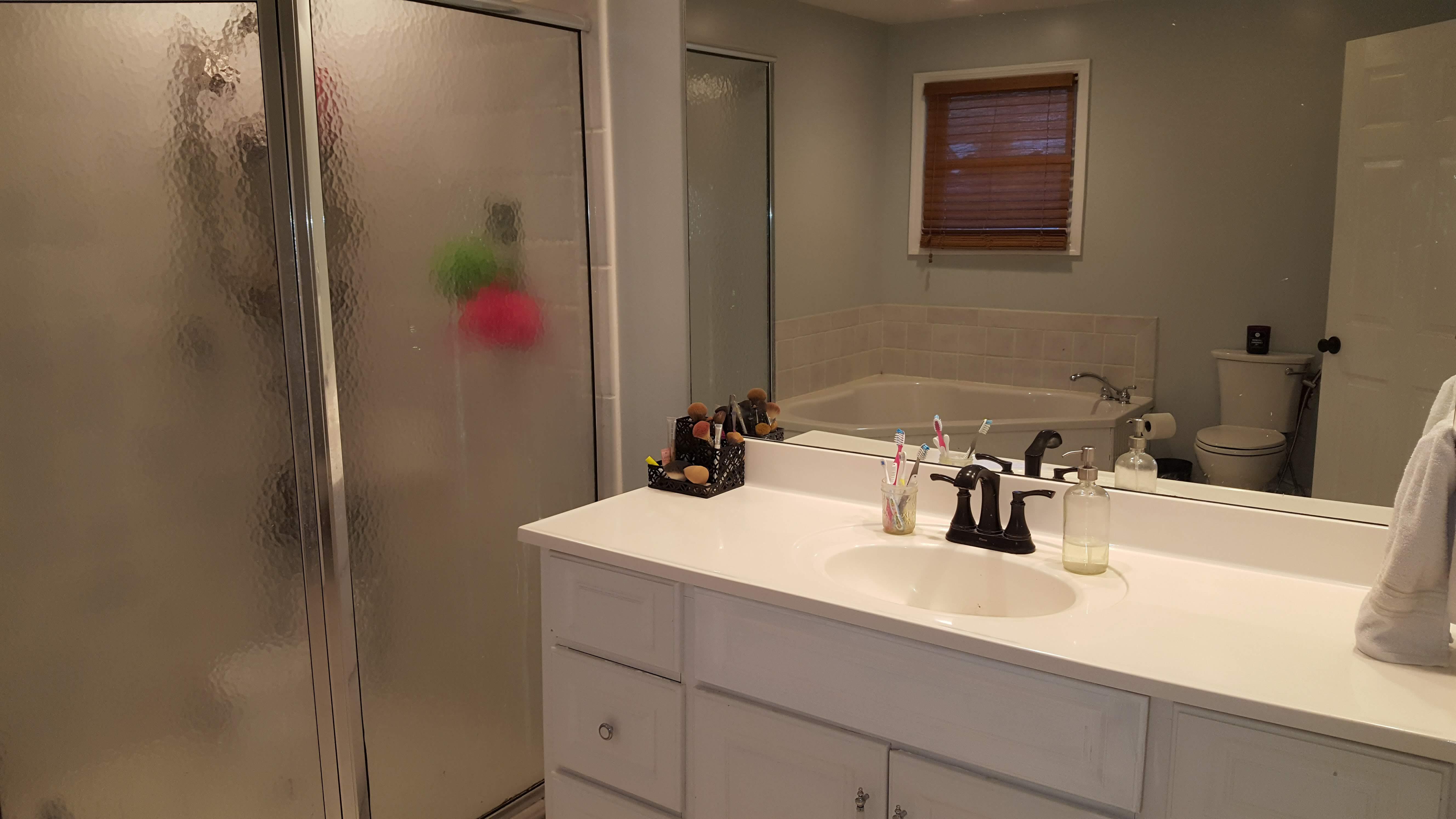 2509 Azalea Drive Master Bathroom