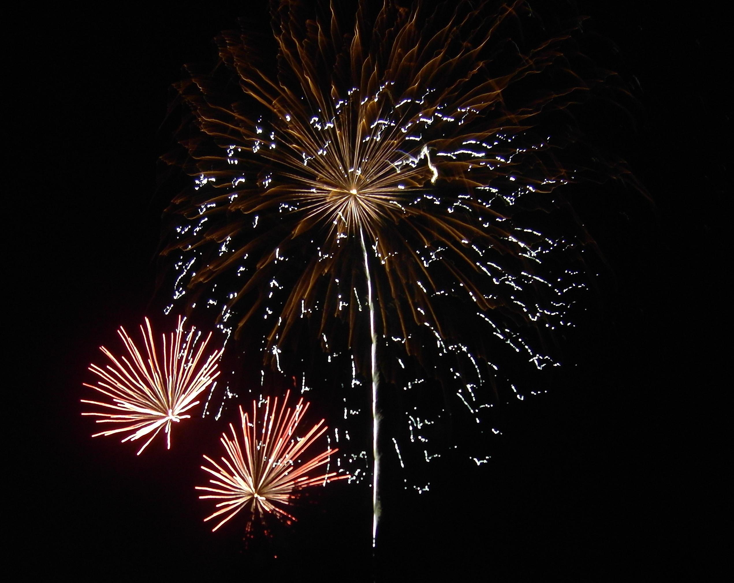 July 4th Celebration - Yolanda Hoversten - Illinois Real Estate