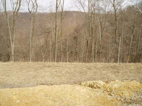 Residential : LOT 9 HUNTING HILLS
