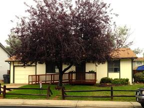Single Family Home Sold: 13322 Alcott Street