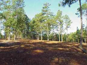 Lots And Land : 108 Phillips Dr