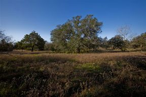 Lots and Land Sold: 88 ac. FM 532