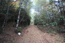 0 Cascade Lake Road Pisgah Forest NC Vacant Land for Sale - HomeInBrevard