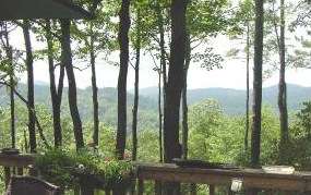44 Wild Rose Lane Brevard NC Home for Sale - HomeInBrevard