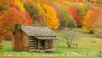 Fall Captured in the Blue Ridge Mountains - HomeInBrevard