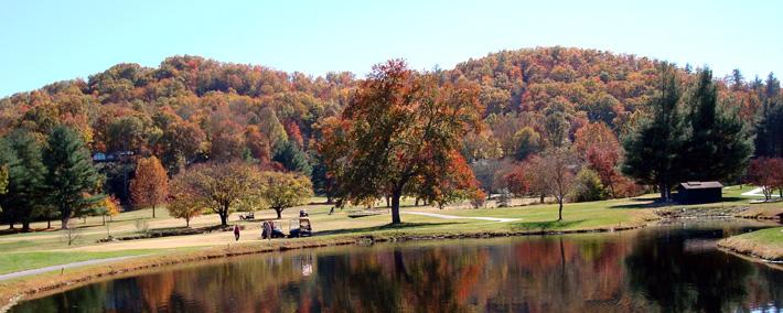 Glen Cannon Pisgah Forest NC Properties for Sale - HomeInBrevard