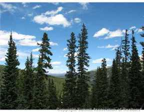 Breckenridge CO Lots And Land For Sale: $72,000
