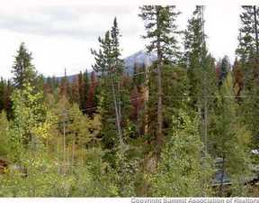 Silverthorne CO Lots And Land For Sale: $210,000