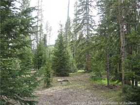 Breckenridge CO Lots And Land For Sale: $119,000