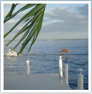 cape coral waterfront