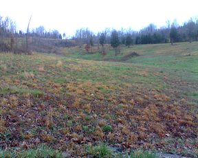 Lake Lots 7500 Lake Lots $7500: 655 Holiday Way