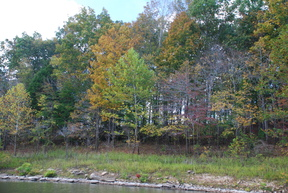 Rough River KY Very Nice Lakefront Lot Lakefront Lot: $65,000