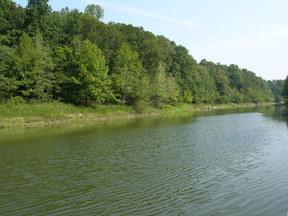 Leitchfield KY lakefront Lot on Rough Ri Lakefront Lot: $52,000