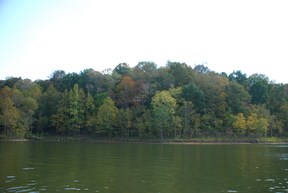 Lakefront Rough River Rough River Lakefront : 161A Sylvan Circle