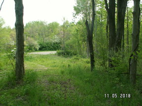 Lots and Land For Sale (JRM-9057A): SR 799 Clendening Lake Road