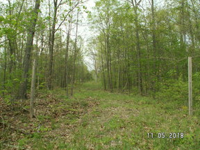 Lots and Land Reduced --(A-928): 32280 Clendening Lake Road