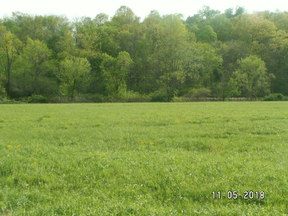 Lots and Land For Sale (JRM-8345): CR 10 Piedmont Freeport Road