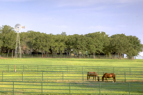 Land/Acreage SOLD!: 22389 S. FM 56