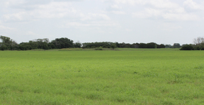 Land/Acreage SOLD: 13425 FM 182