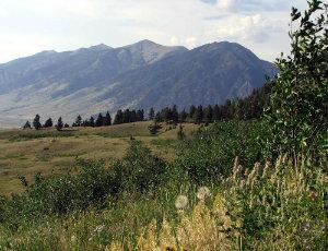 Sportman's Paradise in Montana!