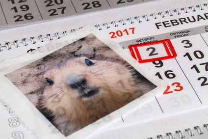 Groundhog's Day - Central Florida - Legends Realty