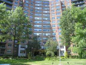 Extra Listings Sold: 61-20 Grand Central Pky #C503