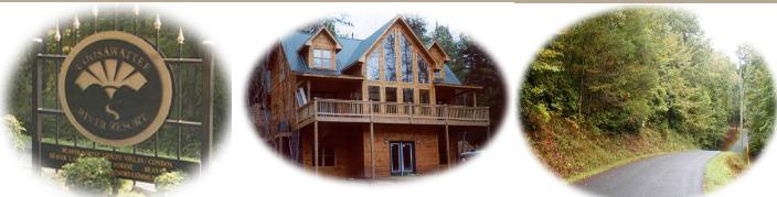 COOSAWATTEE RIVER RESORT   Blue Ridge, GA Homes & Properties