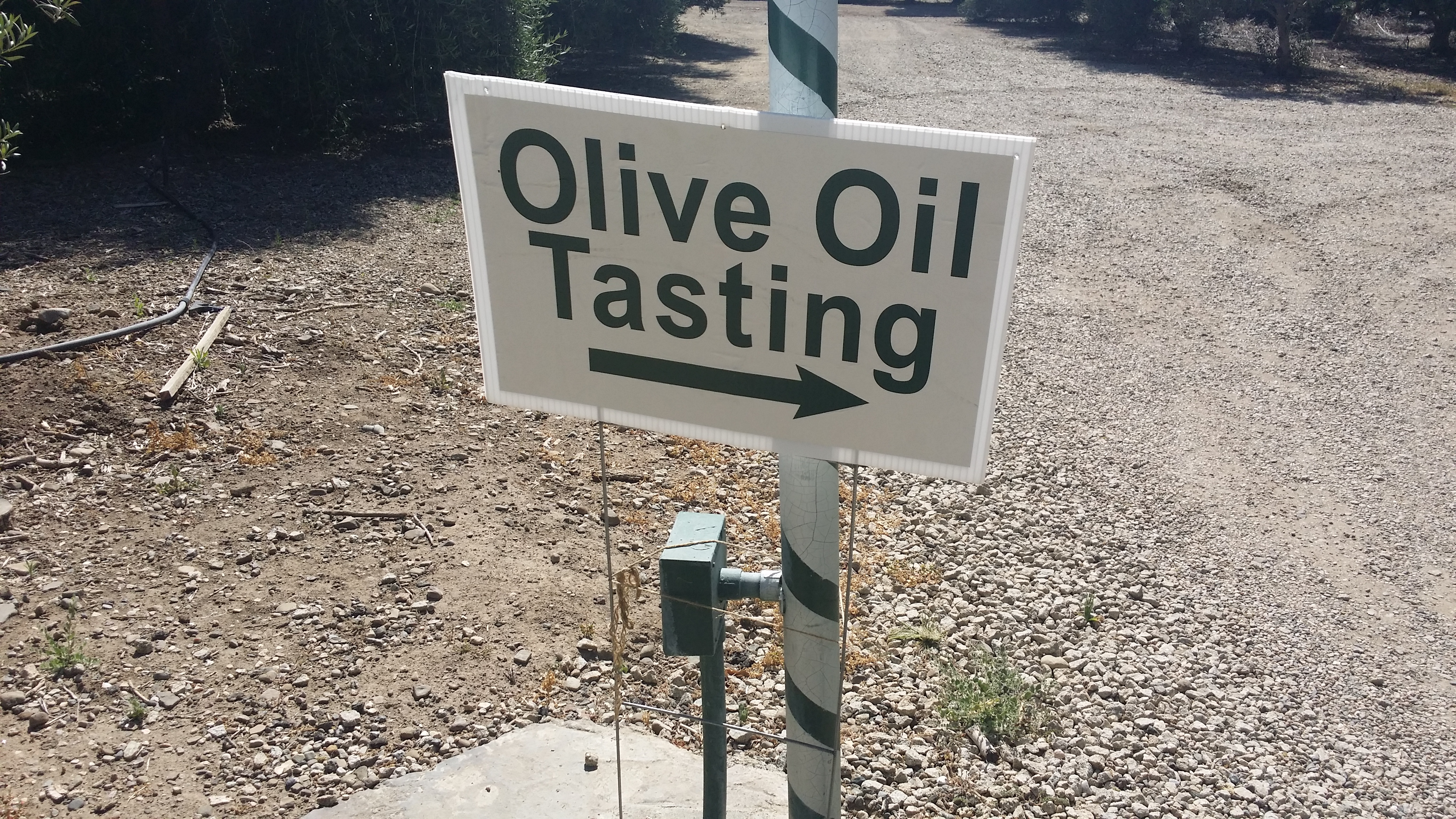 Directional Signs to Regalo Olive Oil Tasting Ojai CA