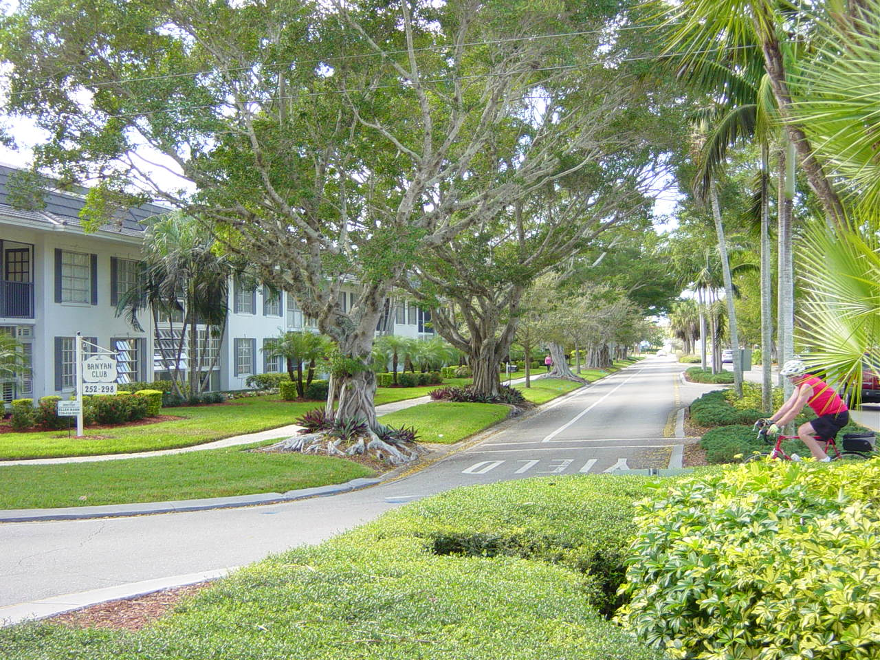 Naples Florida tree lined streets lead to the lovely beach